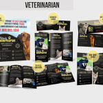 Veterinarian – Local Business Advertising Pack