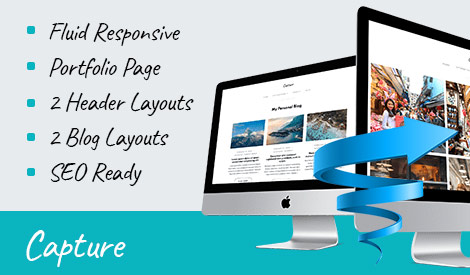 Capture WordPress Theme Review